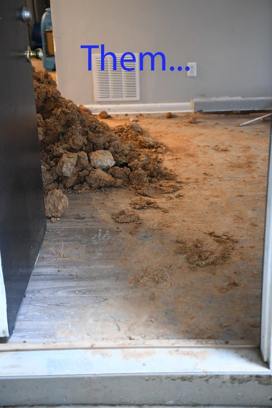 mud-on-the-floor-from-previous-plumber